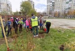 Elevii din Ploieşti au plantat copaci cu ajutorul SGU