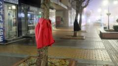 """Campanie umanitară inedită. Zeci de copaci, """"împodobiţi"""" cu haine groase pentru oamenii străzii FOTO"""