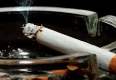 Cum fentezi legea anti-fumat! 4 idei geniale ale unui jurnalist