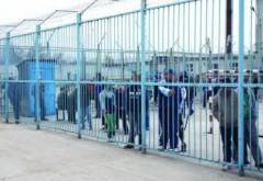 Doi prahoveni condamnaţi la închisoare, depistaţi în Cocorăștii Colț