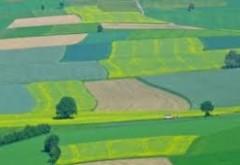 Americanii cumpără România: Mii de hectare achiziționate dintr-o lovitură