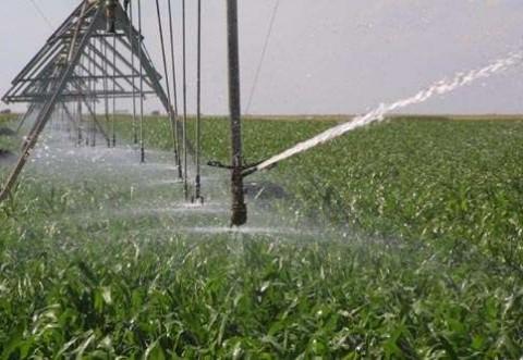 Fost ministru al Agriculturii, semnal de alarmă privind proiectul de refacere a sistemului de irigații