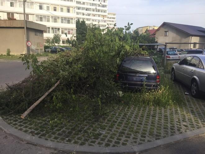 Un ploieştean şi-a găsit maşina îngropată în crengi şi frunze