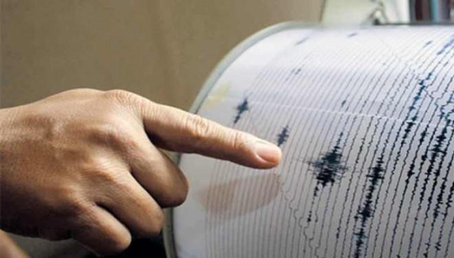 Cutremur de 4 grade în Vrancea