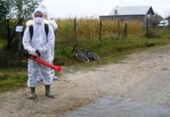 UPDATE Focarul de gripa aviara din Prahova se afla in curtea primarului din Albesti Paleologu