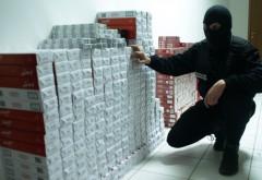 Sute de mii de ţigări de contrabandă, ridicate de poliţiştii prahoveni