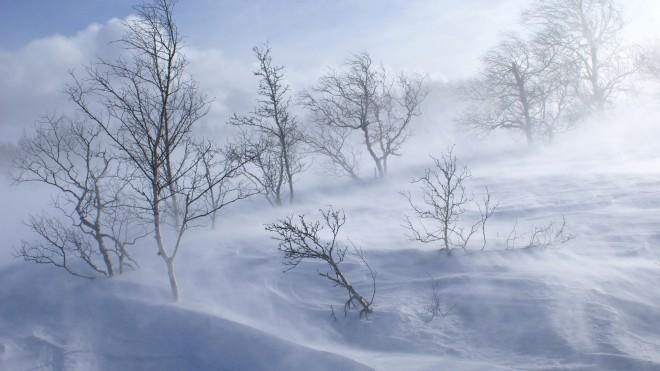 Informare de NINSORI şi VISCOL la munte. Ploi, vânt puternic şi polei în restul regiunilor