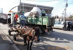 Peturi confiscate și căruțași amendați, la Ploieşti