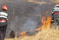 Incendiu de vegetatie uscata, in Ploiesti