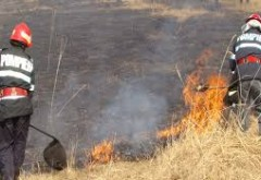 Incendiu de vegetatie uscata extins la padure, la Chiojdeanca