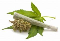 O femeie din Spania, intoxicată cu marijuana, la Miroslăveşti. Ce s-a întâmplat a doua zi de Paşte