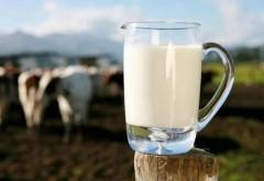 Ajutoare financiare excepţionale pentru producătorii de lapte. Care sunt condiţiile în care se acordă banii