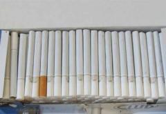 Mini-fabrică de ţigări, depistată la Bucov