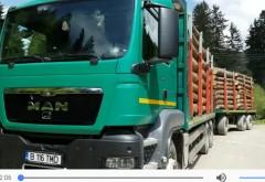 Camion cu arbori nemarcaţi destinaţi Holzindustrie Schweighofer, depistat de jandarmii prahoveni