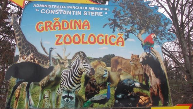Intrare LIBERĂ, vineri seară, la Grădina Zoologică Bucov