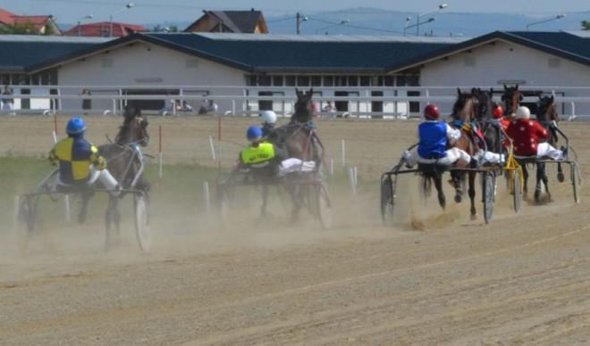 Record de participare pe Hipodrom: 37 de cai în reuniunea de duminică!