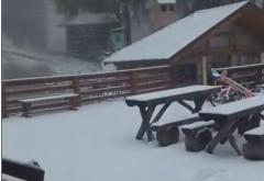A nins la munte. Zăpada la cabana Postăvarul și pe Transalpina VIDEO