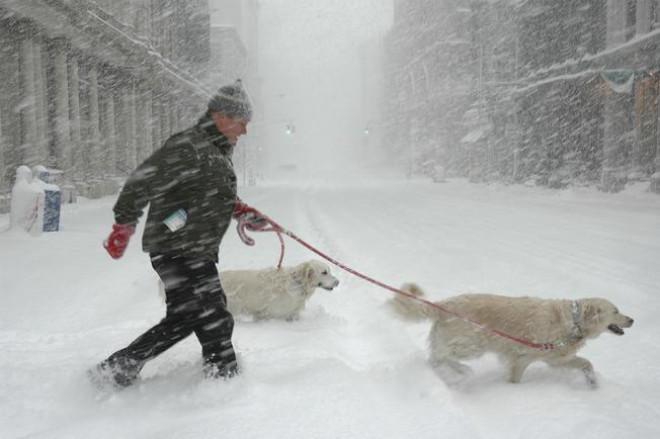 Ne așteaptă o iarnă grea! Ce avertismente transmit meteorologii pentru sezonul rece