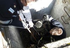 UPDATE Operaţiune de salvare pe strada Văleni din Ploieşti- FOTO