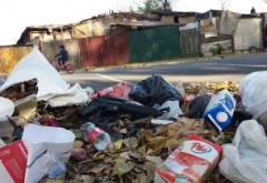 Focar de infecție la intrarea în Ploiești. Autoritățile se fac că nu văd groapa ilegală de gunoi