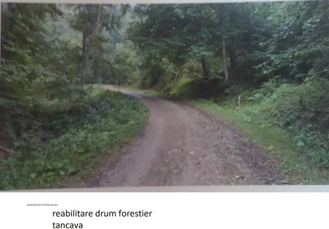 Anunț public privind depunerea solicitării de emitere a acordului de mediu Direcția Silvică Prahova, Ocolul Silvic Vălenii de Munte -  Reabilitare drum calamitat TÂNCAVA