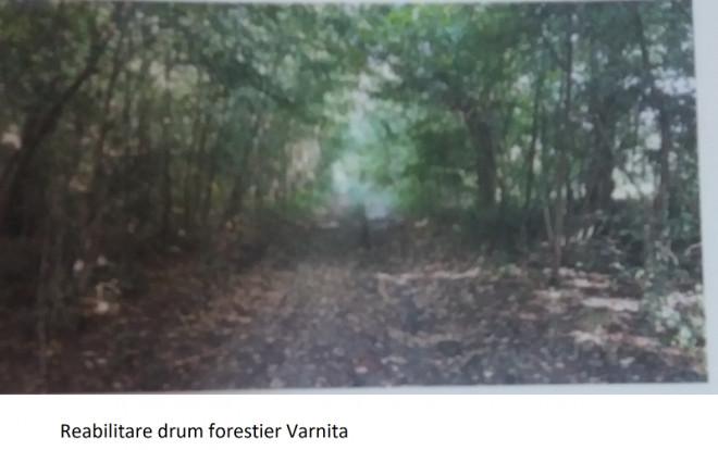 Anunț public privind depunerea solicitării de emitere a acordului de mediu  Direcția Silvică Prahova, Ocolul Silvic Ploiești - Reabilitare drum forestier VARNIȚA
