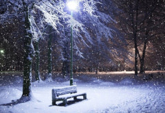 A icneput sa ninga la Ploiesti!