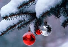 Vom avea zăpadă de Crăciun? Ce spun meteorologii