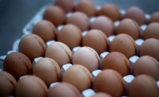 Preţurile la ouă, unt, fructe proaspete şi combustibili au crescut cel mai mult în decembrie 2017