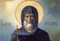 Calendar creștin ortodox 17 ianuarie. Sfântul Antonie cel Mare