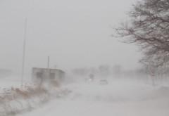 E HAOS TOTAL în România! Viscolul a făcut PRĂPĂD: Mașini blocate, localități izolate și mii de polițiști în luptă cu nămeții