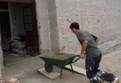LISTA unitatilor de invatamant din Ploiesti care vor intra in programul de reparatii majore