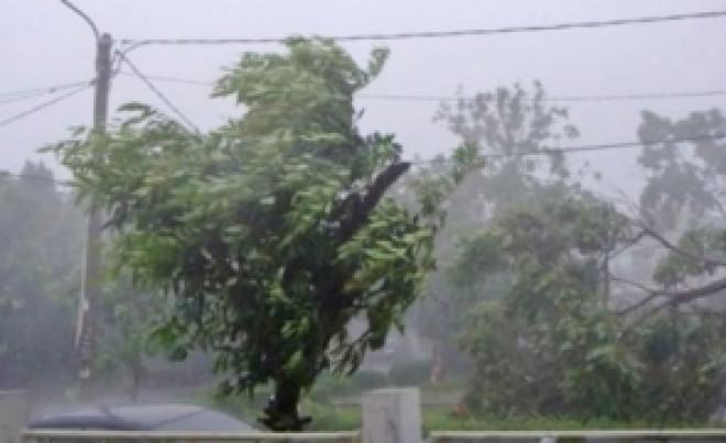 AVERTIZARE METEO: Cod galben de vânt puternic în Prahova, rafale de peste 110 kilometri la oră