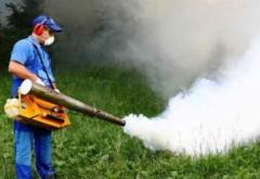 A fost stabilit programul acțiunilor de dezinsecție, dezinfecție și deratizare în Ploiești