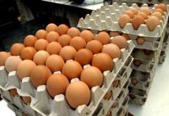Scoatem din buzunar mai mulți bani pentru ouă, citrice și pâine