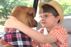 UIMITOR. Cum a reuşit un câine să schimbe viaţa unei familii