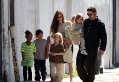 Declarația ȘOCANTĂ a Angelinei Jolie. Ce vrea să le facă copiilor ei