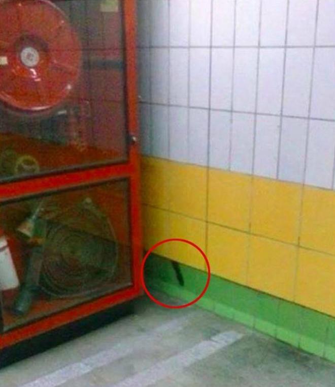 Au vazut ceva ciudat la metrou intr-un perete si au alertat autoritatile. Cand au aflat ce era au ramas fara cuvinte! Statea acolo de 5 ANI