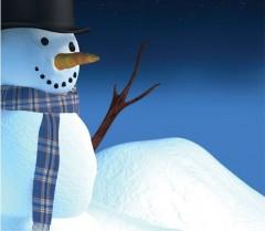 Au lucrat timp de o lună la un om de zăpadă. Rezultatul i-a dus în Cartea Recordurilor