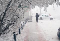 O femeie a iesit la plimbare 15 minute pe o temperatura de -47 de grade! Cum arata cand s-a intors acasa