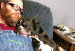 SCENE INCREDIBILE Un câine și-a împușcat stăpânul: Reacția șefului poliției e colosală - VIDEO