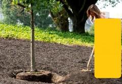 Melania Trump a purtat tocuri și o fustă în valoare de 4.000 de dolari la plantarea unui copac
