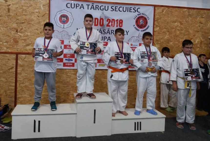 Click pentru a mari imaginea judo1-860x578.jpg
