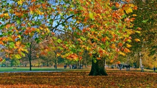 PROGNOZA METEO pe două săptămâni: Cum va fi vremea la început de septembrie