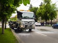 În ce cartiere face curăţenie Rosal ASTAZI