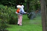 Se prelungeşte acţiunea de dezinsecţie în Ploieşti