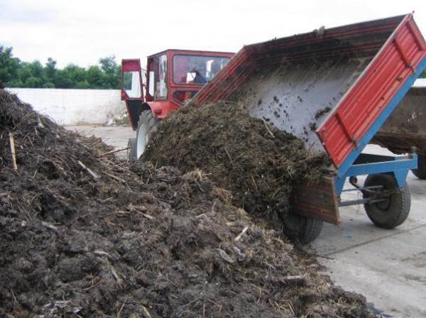 Primariile din Prahova, solicitate sa depuna Planul pentru protectia apelor impotriva poluarii cu nitrati agricoli