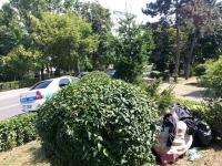 Politia Locala a iesit la vanatoare de... PET-uri