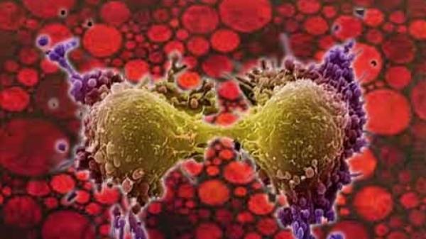 Fructul verii care te ţine departe de CANCER