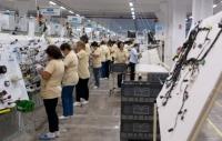 Yazaki angajeaza 1.000 de muncitori pentru fabrica de la Urlati